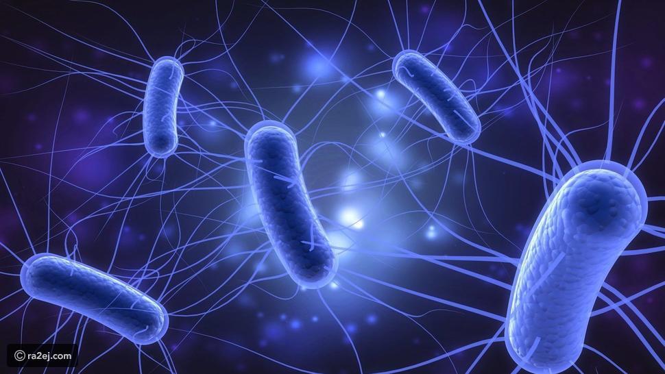 الفيروسات الموجودة داخل جسمك هي التي تبقيك على قيد الحياة