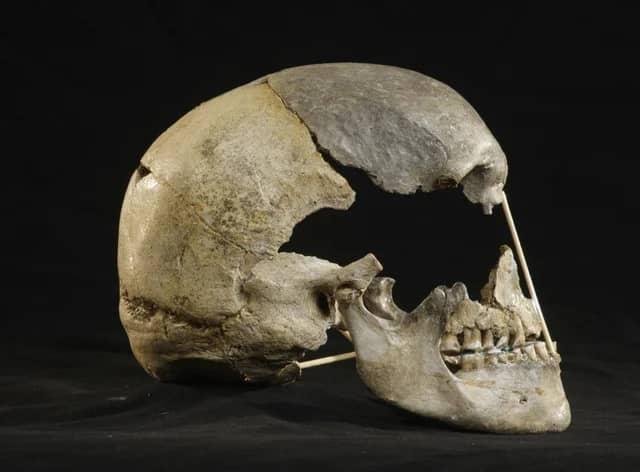 اكتشاف جمجمة في التشيك